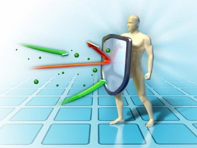 Чем поможет купырь при пониженном имунитете