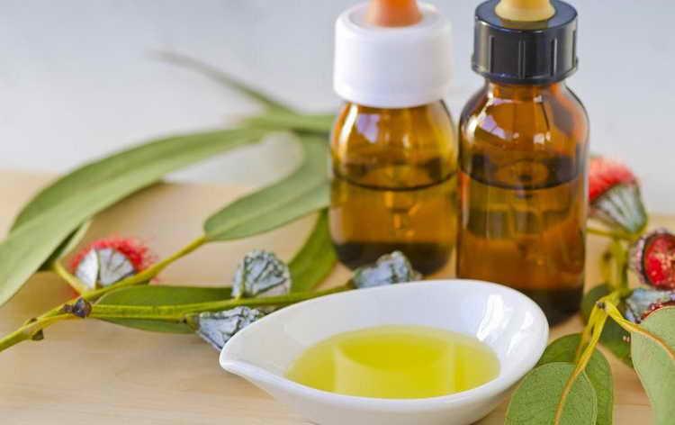 Мазь с маслом эвкалипта при псориатическом артрите