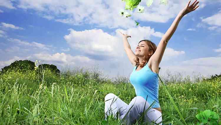 Рута душистая поможет улучшить психологическое и эмоциональное состояние