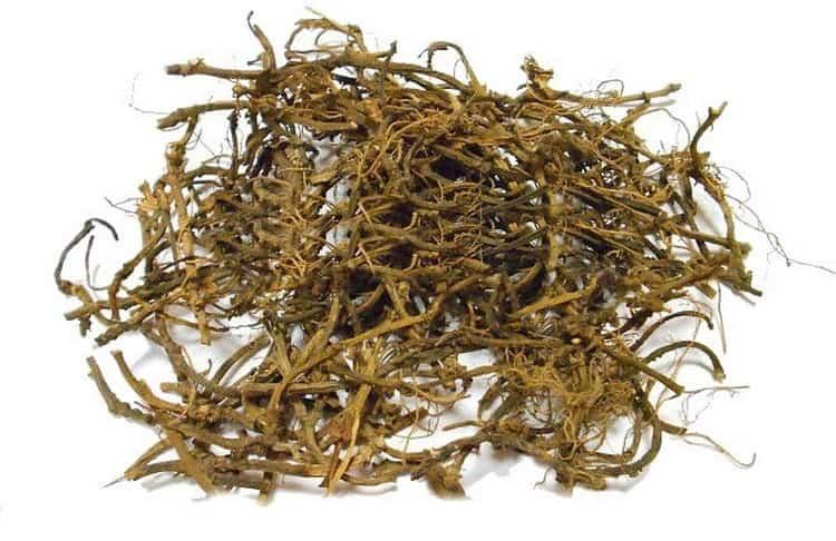 Много полезных веществ содержится в корне растения, но не стоит забывать о том, что оно ядовито.