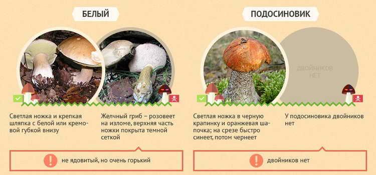 отравление грибами первая помощь в домашних условиях быстро