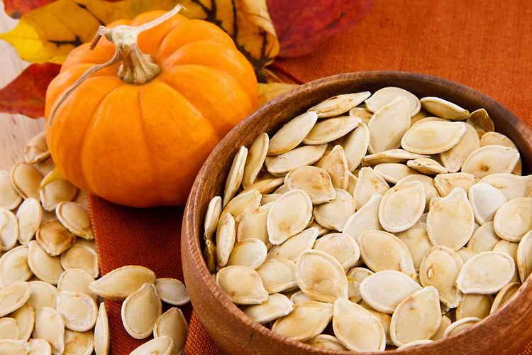 Семена тыквы от глистов