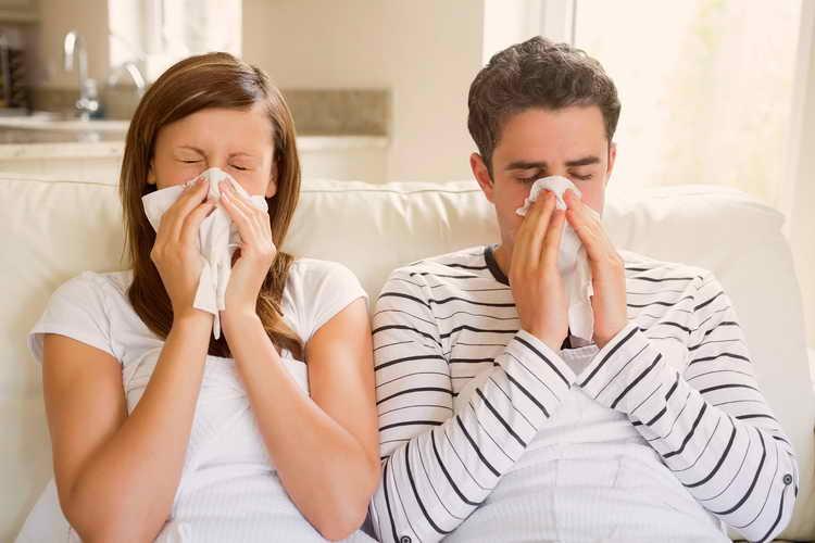 болят почки симптомы и лечение