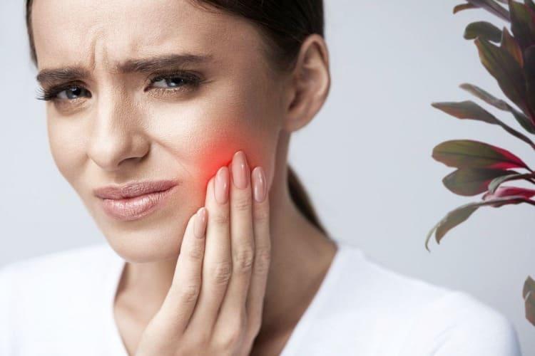 Считается, что растение снижает зубную боль.