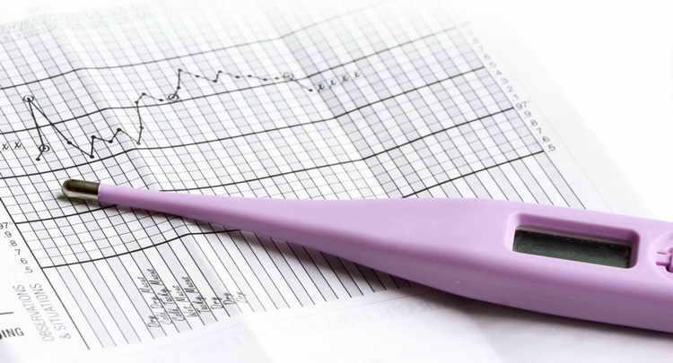 как определить беременность в домашних условиях