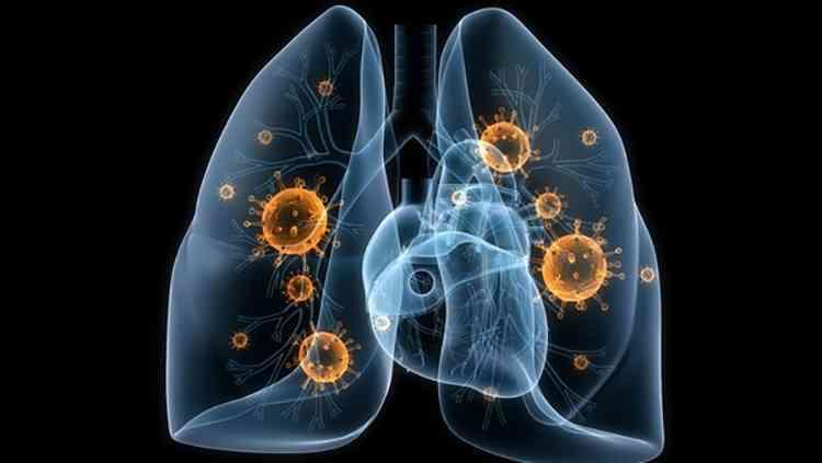 Фундук при серьезных заболеваниях легких