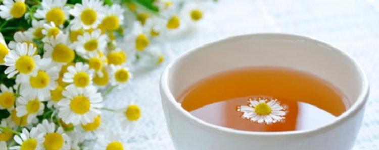 Полезный чай из нивяника