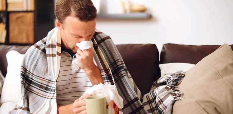 Вьюнок полевой снимет симптомы простуды