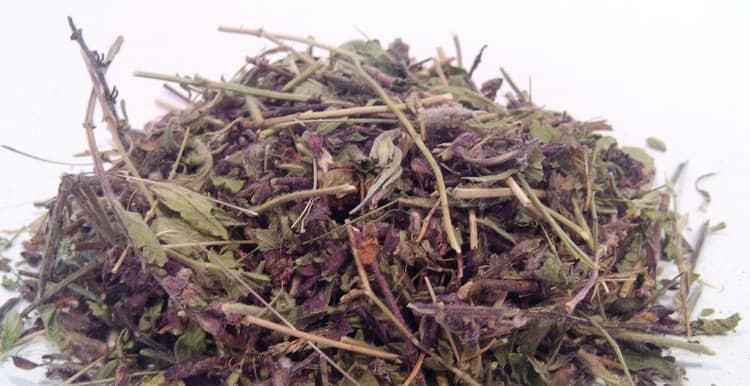 Сушеная трава будет храниться сроком до двух лет.