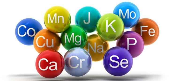 Сафлор полезные микроэлементы в составе растения