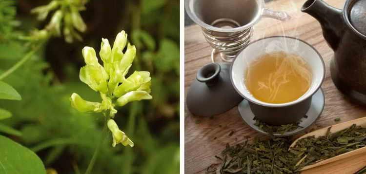 чай от грудной жабы