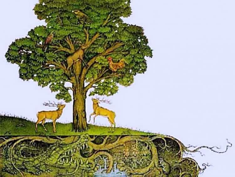 Издавна люди верили и в магические свойства дерева ясень.