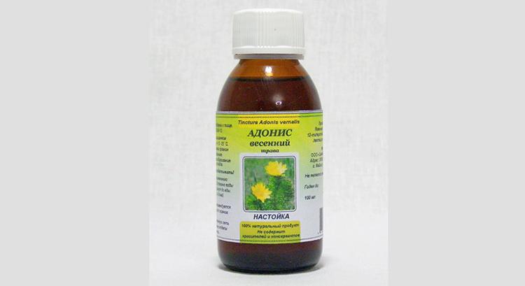 Адонис весенний настойка растения