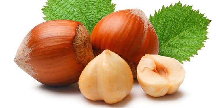 Польза плодов орешника
