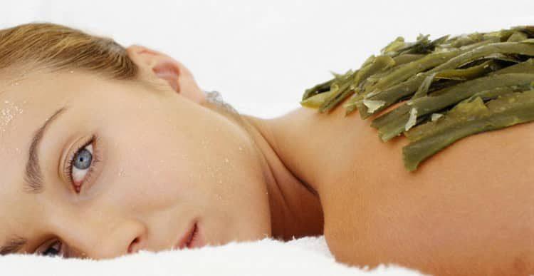 Польза, лечебные свойства и противопоказания к употреблению ламинарии