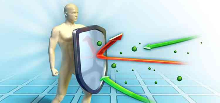 Соя поможет усилить иммунитет