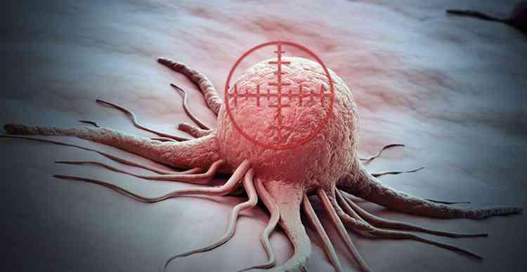 Бамия поможет в профилактике раковых заболеваний