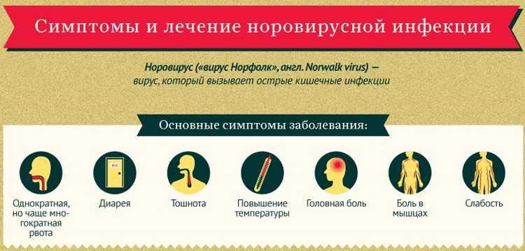 норовирусная инфекция лечение