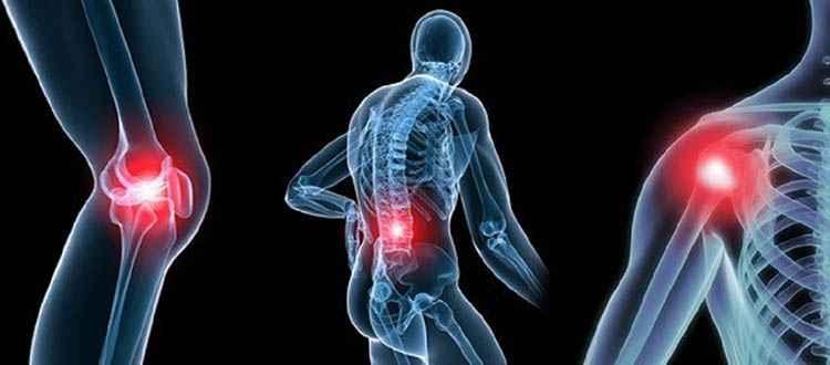 Периллия поможет устранить воспаление суставов