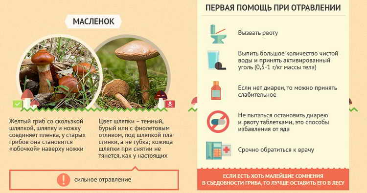 первая помощь при отравлении грибами в лесу
