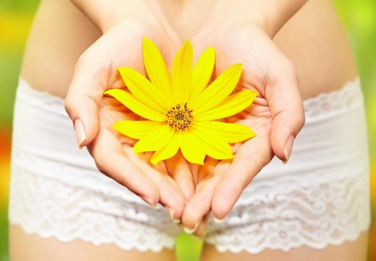 освары на основе этого растения применяются при различных гинекологических заболеваниях.