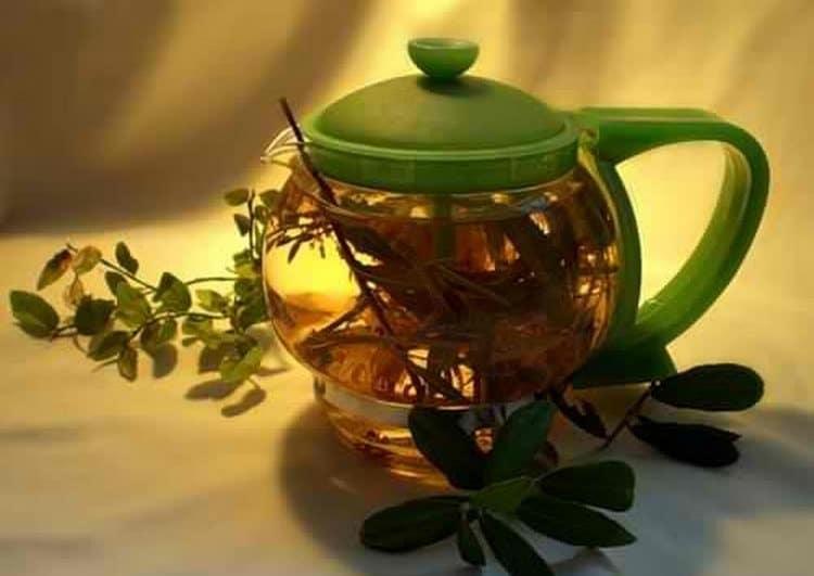 Чай из володушки помогает при мигренях и головных болях.