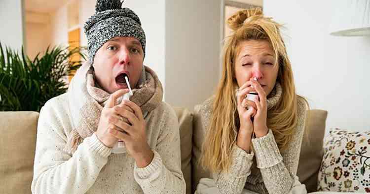 Астильба поможет справиться с простудой