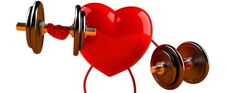 Нут как профилактика сердечных заболеваний