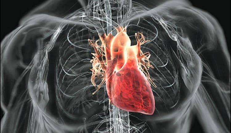 Причиной, почему болит голова и тошнит, мгут быть заболевания сердечно-сосудистой системы.