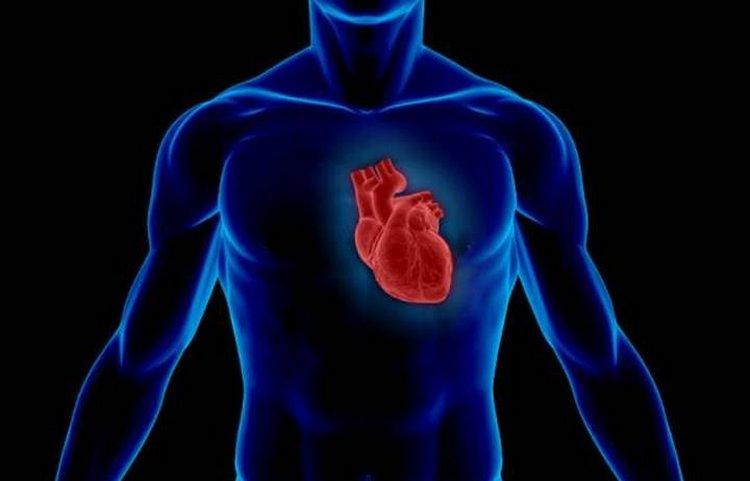 такой сахар благотворно влияет на работу сердца.