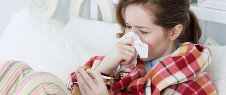 От простуды поможет орешник
