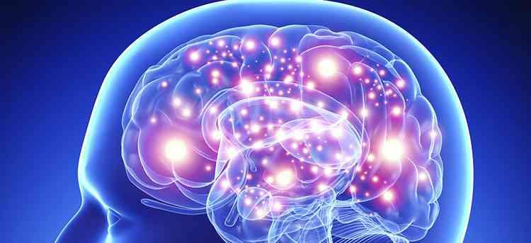 Соя поможет улучшить работу мозга