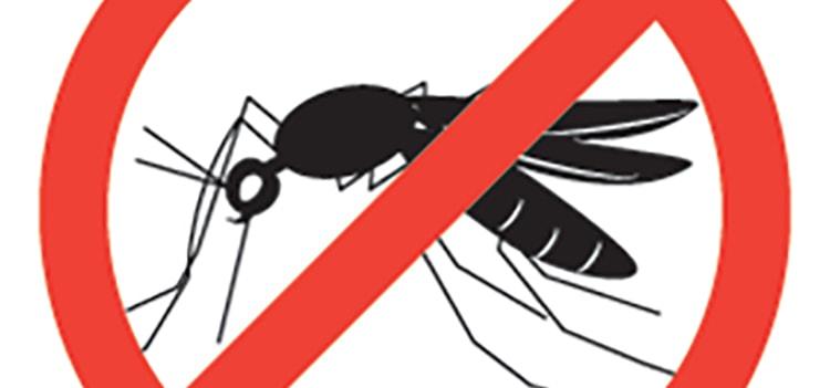 Нивяник от комаров