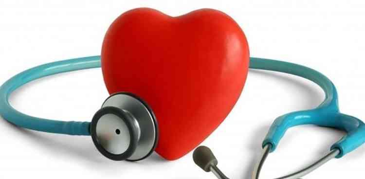 Альбиция поможет наладить работу сердца