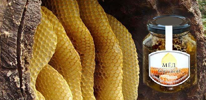 Бортевой мёд