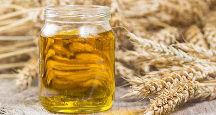 Пшеница чем полезно масло и его применение
