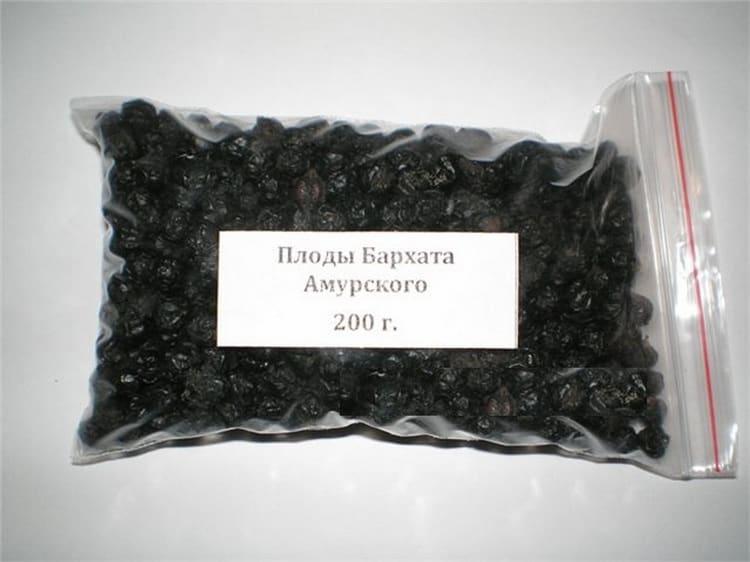 Узнайте все о пользе и вреде ягод амурского бархата.