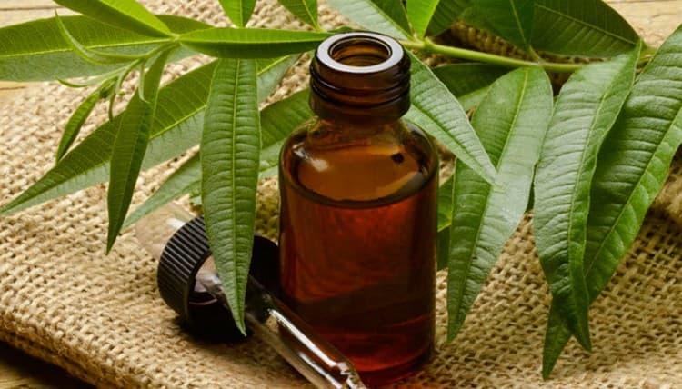 Можно также обрабатывать нарыв маслом чайного дерева.