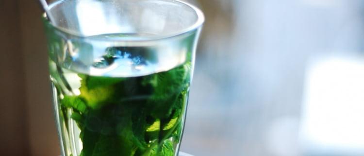 Полезность настойки спиртовой с мятой