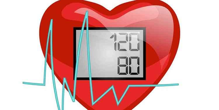 Пустырник понижает артериальное давление