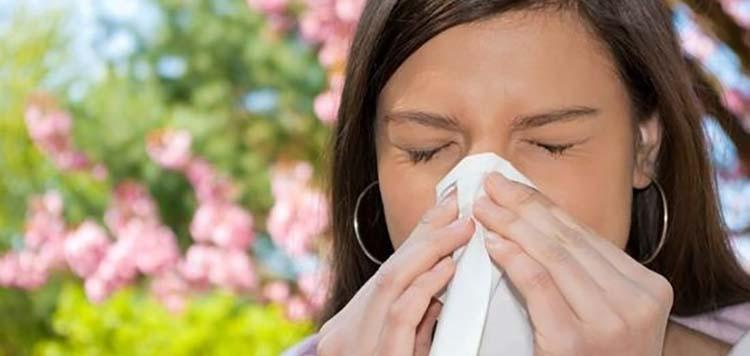 Защити от аллергии пеларгония