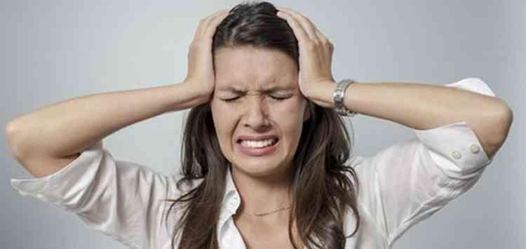 Фабиана растение поможет справиться с головной болью