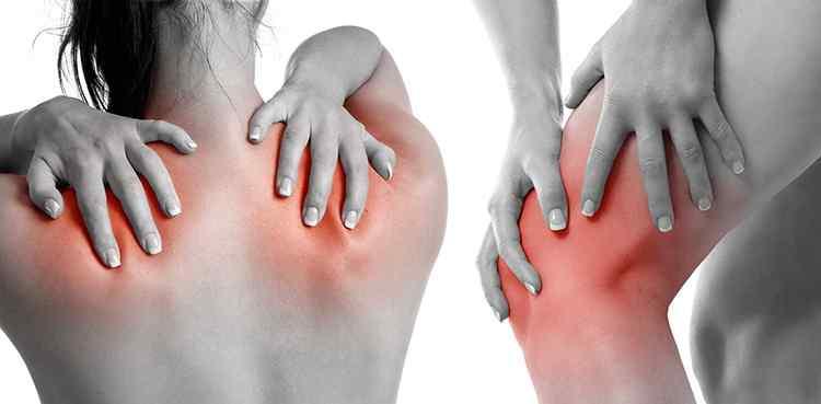 Сафлор поможет избавиться от болей при артрите