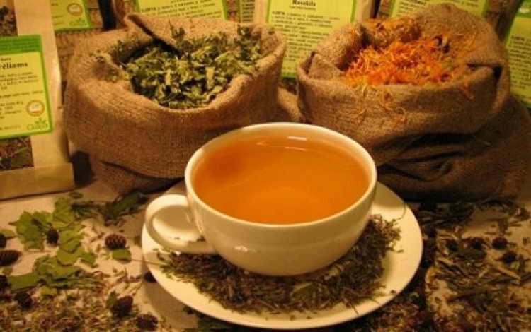чай с омелой от сердечного кашля