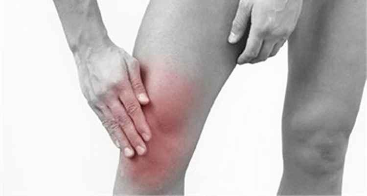 От ревматических болей поможет печеночница
