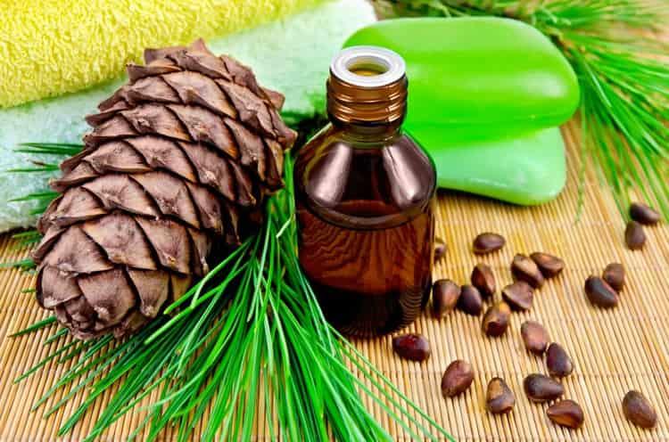 Пользу для организма приносит и масло кедровых орехов.