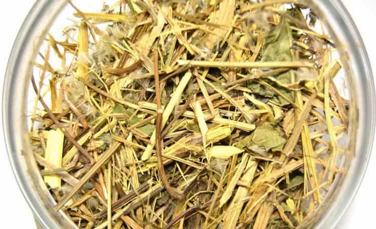 Растение используется исключительно в сушеном виде, свежие листья ядовиты.