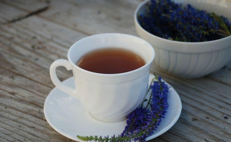 Очень полезны также чаи и полоскания из вероники.