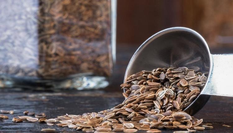 Многими лечебными свойствами обладают семена укропа, хотя есть и некоторые противопоказания к их употреблению.