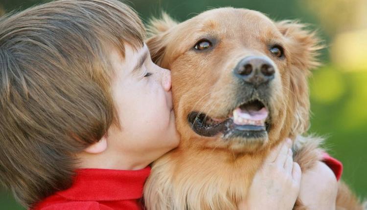 Частые контакты с домашними животными становятся причиной глистной инвазии.